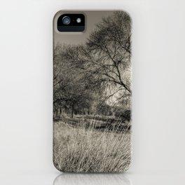European sabannah iPhone Case