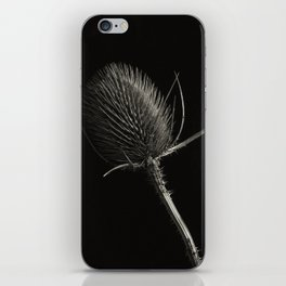 Project 'Decay'. Spear Thistle (Cirsium vulgare) iPhone Skin