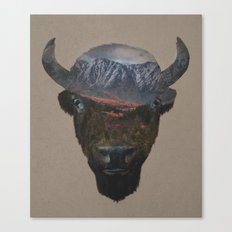 Bison Peak Canvas Print