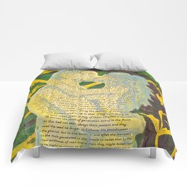 Split Aparts Detail 2 Comforters