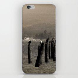 Columbia River Cormorants Birds iPhone Skin