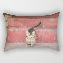 Cat in red stairs Rectangular Pillow