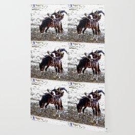 The Dismount   -   Rodeo Cowboy Wallpaper