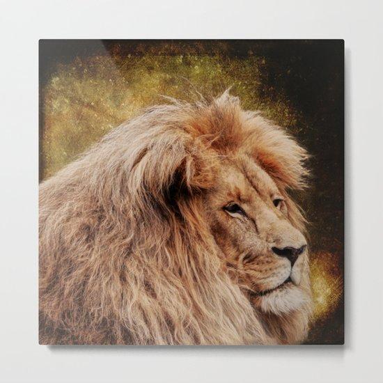 Wild Lion Carnivore Africa Metal Print