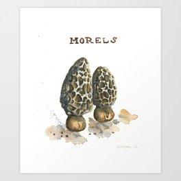 Morels Art Print