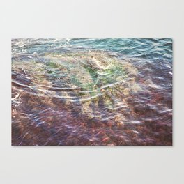 Colorful Ocean Wading Canvas Print