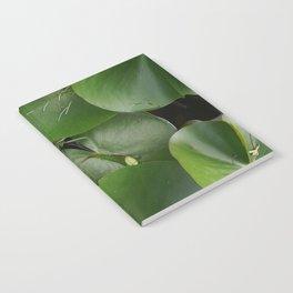 Lotus Flowe_pink1 Notebook
