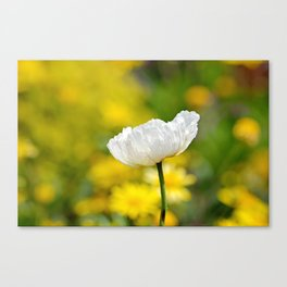 Glorious Spring Canvas Print