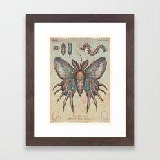 Tyria sphinx furvus Framed Art Print