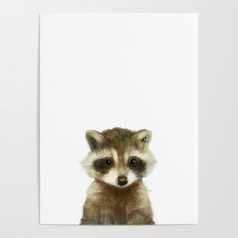 Little Raccoon Poster