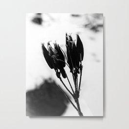 Dormant Metal Print