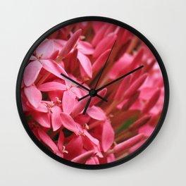 Dramatic Ixora Wall Clock