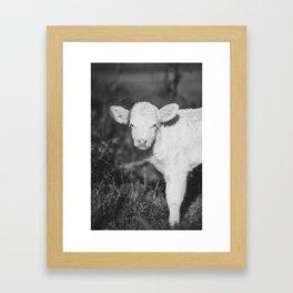 Cute Calf (Black and White) Framed Art Print