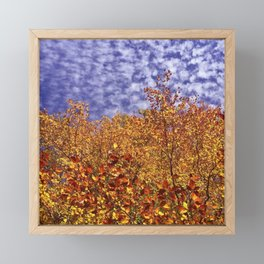 Fall Forest and Clouds 1391 Framed Mini Art Print