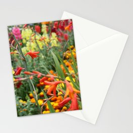 Flowers in the Kitchen Garden Stationery Cards