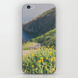 The way I see it iPhone Skin