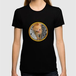 I've Got Sunshine T-shirt
