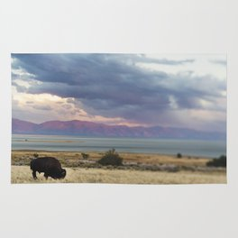 The Bison and The Desert Storm Rug