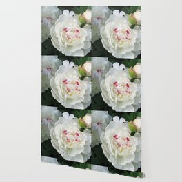 White Beauties Wallpaper
