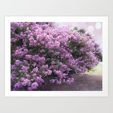 Purple Lavender Blossom Tree Art Print