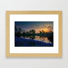 Bluebonnets at Sunrise Framed Art Print