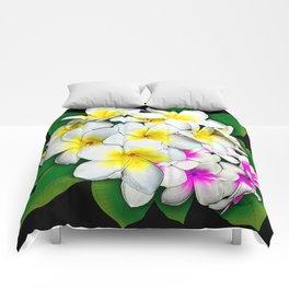 Plumeria Flowers Bouquet Comforters