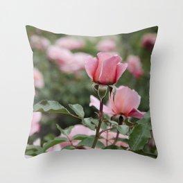 Never-ending roses Throw Pillow