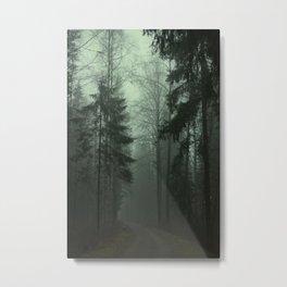 Foggy morning path Metal Print