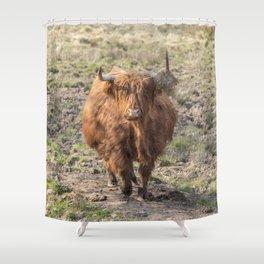 Scottish Highland cow Shower Curtain