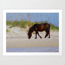 Shack Pony Art Print