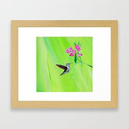 Hummingbird & Sweet Peas Framed Art Print