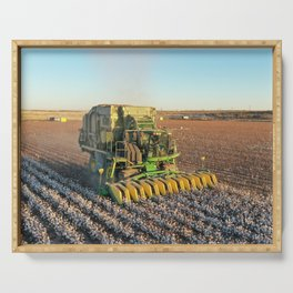 Cotton harvest  Serving Tray