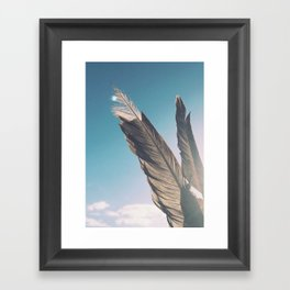 Brown Feathers Framed Art Print