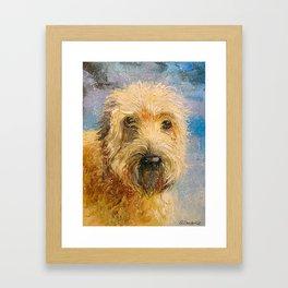The Irish Terrier Framed Art Print