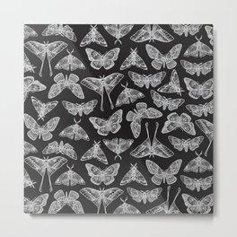 Lepidoptera Black & White Metal Print