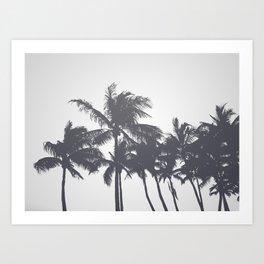 Tropical Palms Gray Art Print