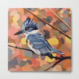 Belted Kingfisher Metal Print