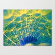 dandelion abstract Canvas Print
