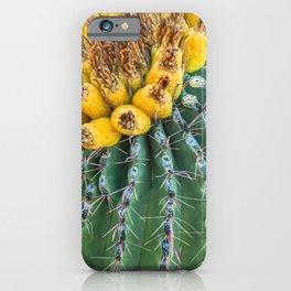 Golden Crown iPhone Case