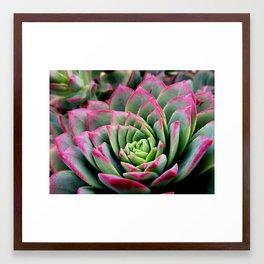 alluring nature Framed Art Print