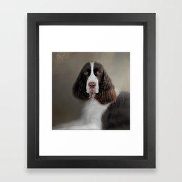Waiting Patiently - English Springer Spaniel Framed Art Print