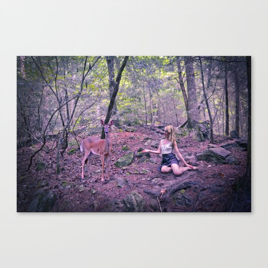 Enchanted Encounter Canvas Print