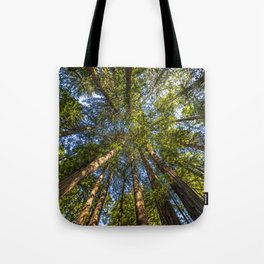 Coastal Redwoods aka Coast Redwood and California Redwood (Sequoia sempervirens) Tote Bag