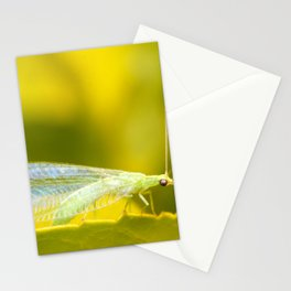 Lace Wing Stationery Cards