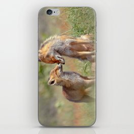 Fox Felicity - Mother and fox kit showing love and affection iPhone Skin