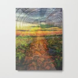 The greenhouse and the breakwater Metal Print