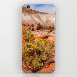 Hanging on the cliff at Kodachrome Basin State Park iPhone Skin