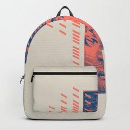 Rain Backpack