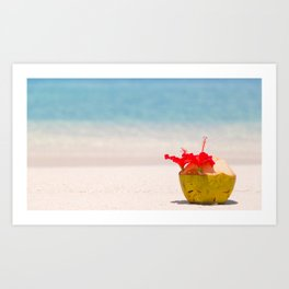 Coconut in the sand Art Print
