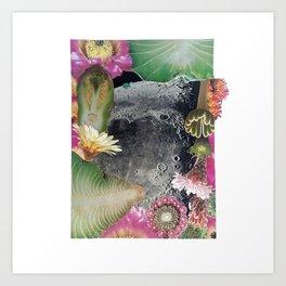 Turtle #3 (Desert Flower Moon) [Cecilia Lee] Art Print